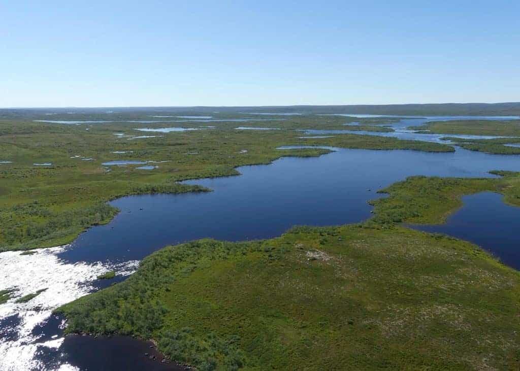 Tundra fra helikopter. // Foto: Stian Are Olsen